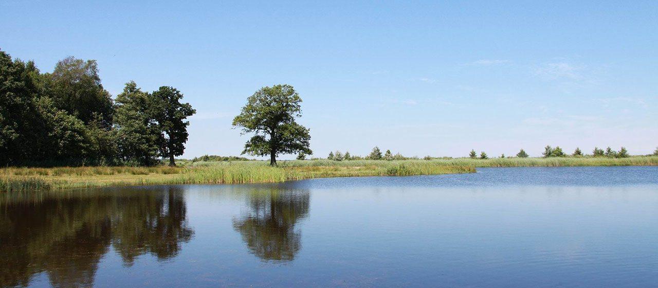 Polders Zuidlaardermeer