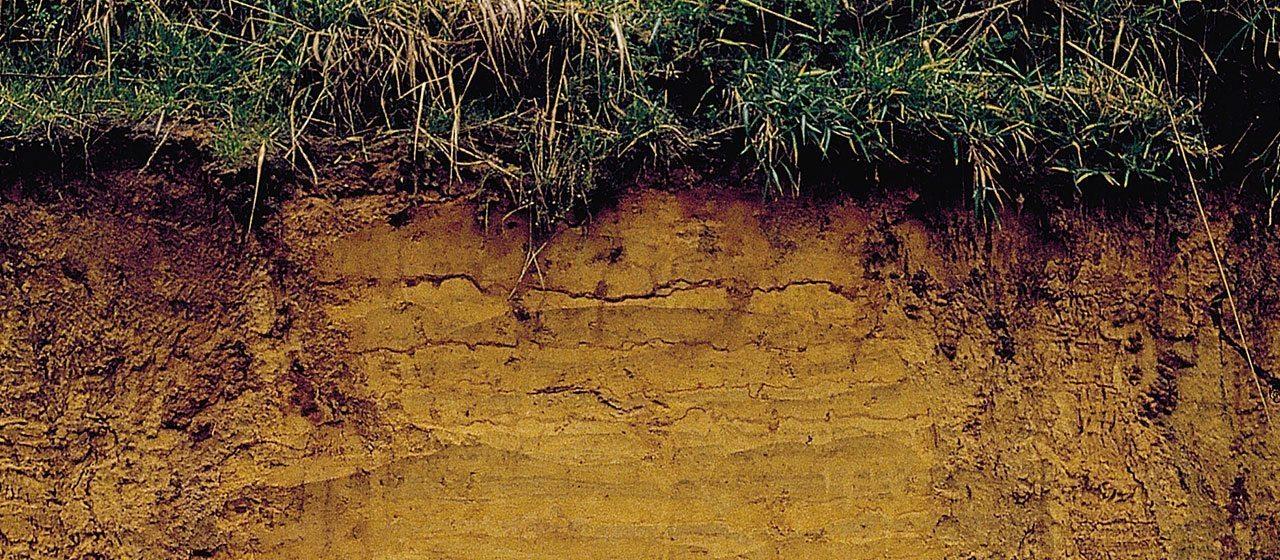 Ice-age outcrop Donderen